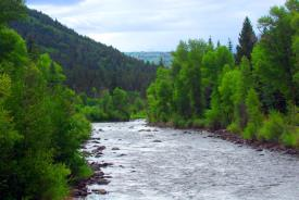 Land & Lodge Coloradoo: Conejos river