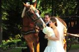 Historic B&B Inn and Destination Wedding Venue