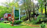 Poconos Buttermilk Falls Bed & Breakfast w/ Store!