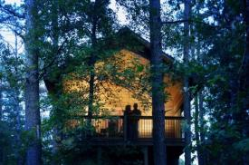 Eureka Sunset Cabins:
