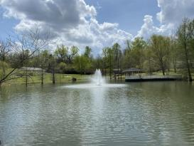 Endless Possibilities on 20 acres -NASHVILLE!: