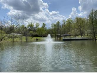 Endless Possibilities on 20 acres -NASHVILLE!
